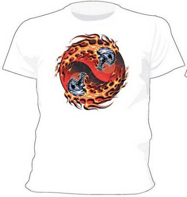 Skull and flames t-shirt